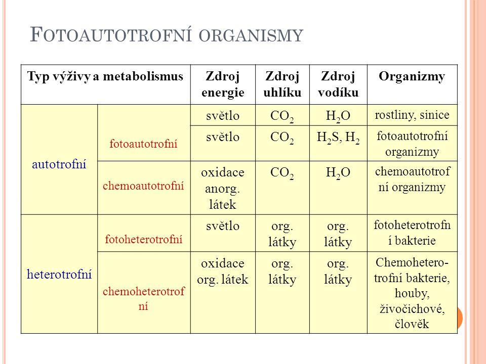 Obr. 1: Vztah mezi autotrofními a heterotrofními organismy