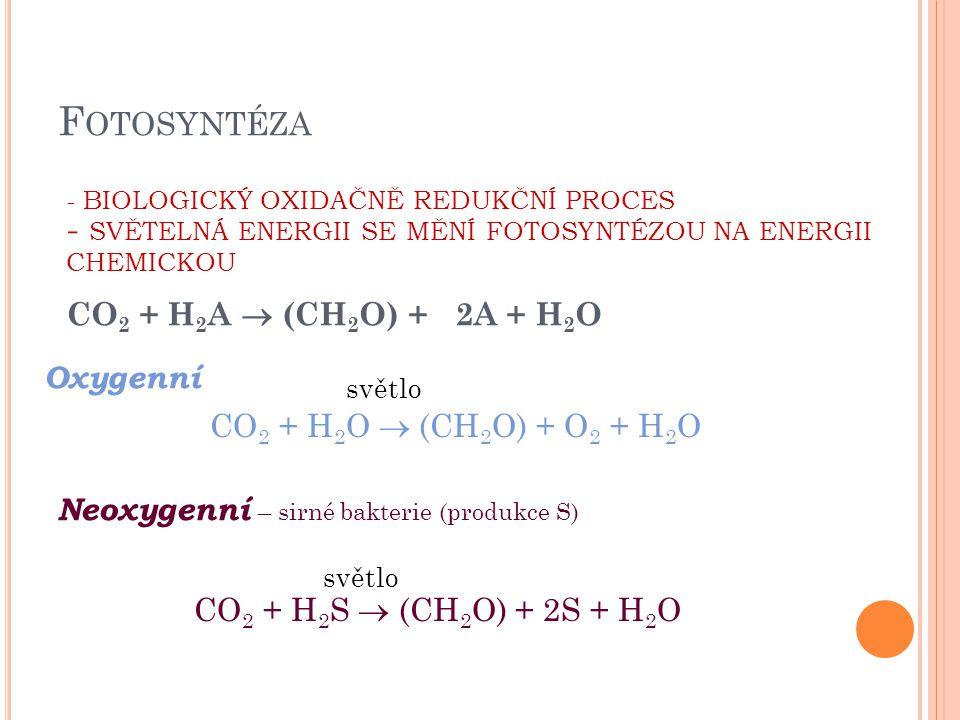 C HLOROPLAST Obr. 2: chloroplast