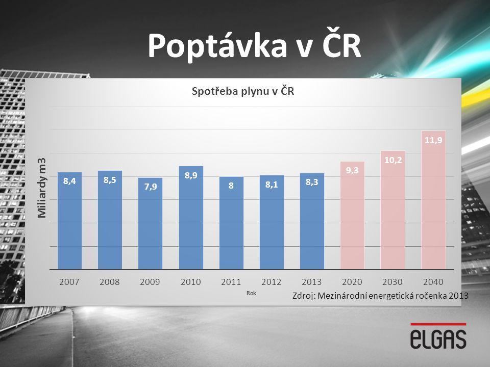 Poptávka v ČR Zdroj: Mezinárodní energetická ročenka 2013