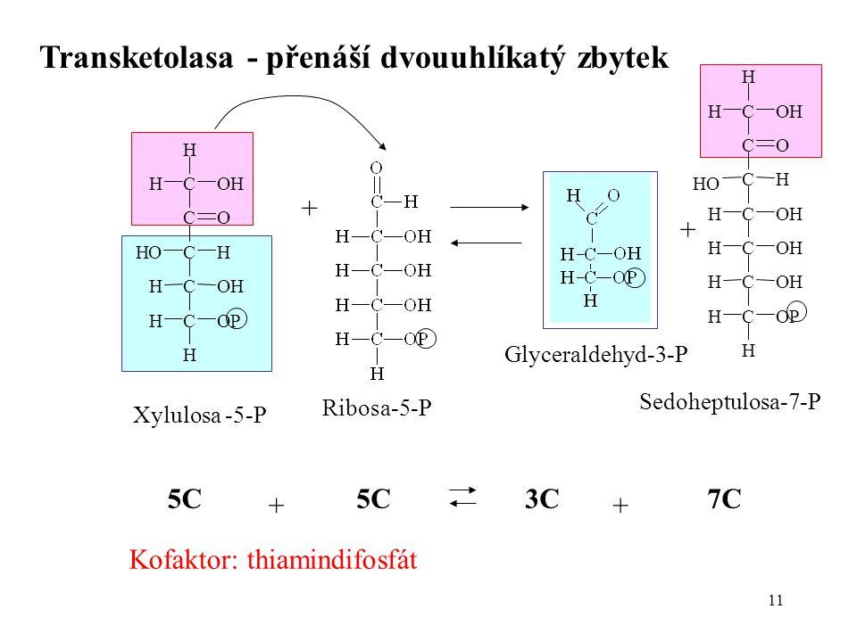11 Transketolasa - přenáší dvouuhlíkatý zbytek + + Kofaktor: thiamindifosfát Xylulosa -5-P Ribosa-5-P Glyceraldehyd-3-P Sedoheptulosa-7-P C C C C C C