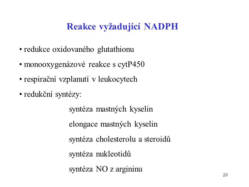 20 Reakce vyžadující NADPH • redukce oxidovaného glutathionu • monooxygenázové reakce s cytP450 • respirační vzplanutí v leukocytech • redukční syntéz