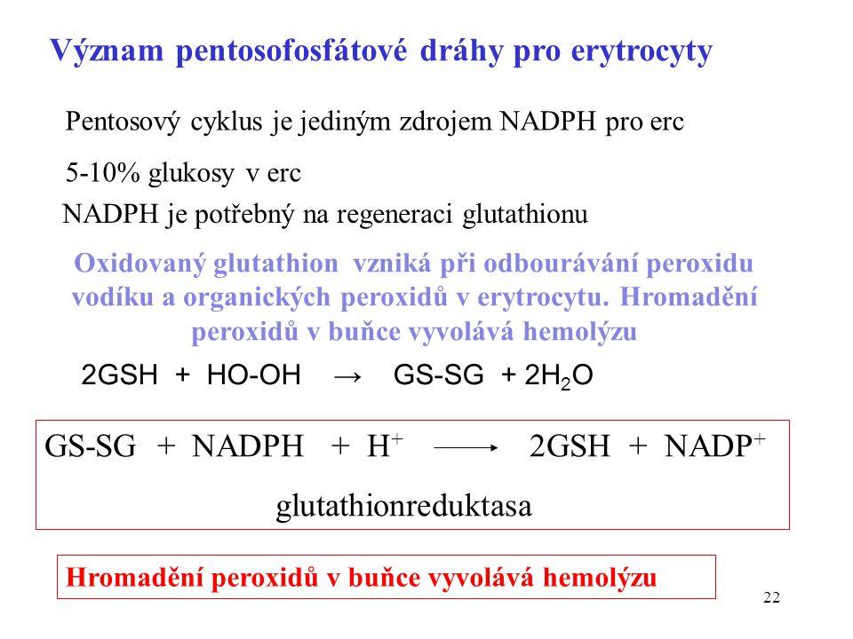 22 Význam pentosofosfátové dráhy pro erytrocyty GS-SG + NADPH + H + 2GSH + NADP + glutathionreduktasa Pentosový cyklus je jediným zdrojem NADPH pro er