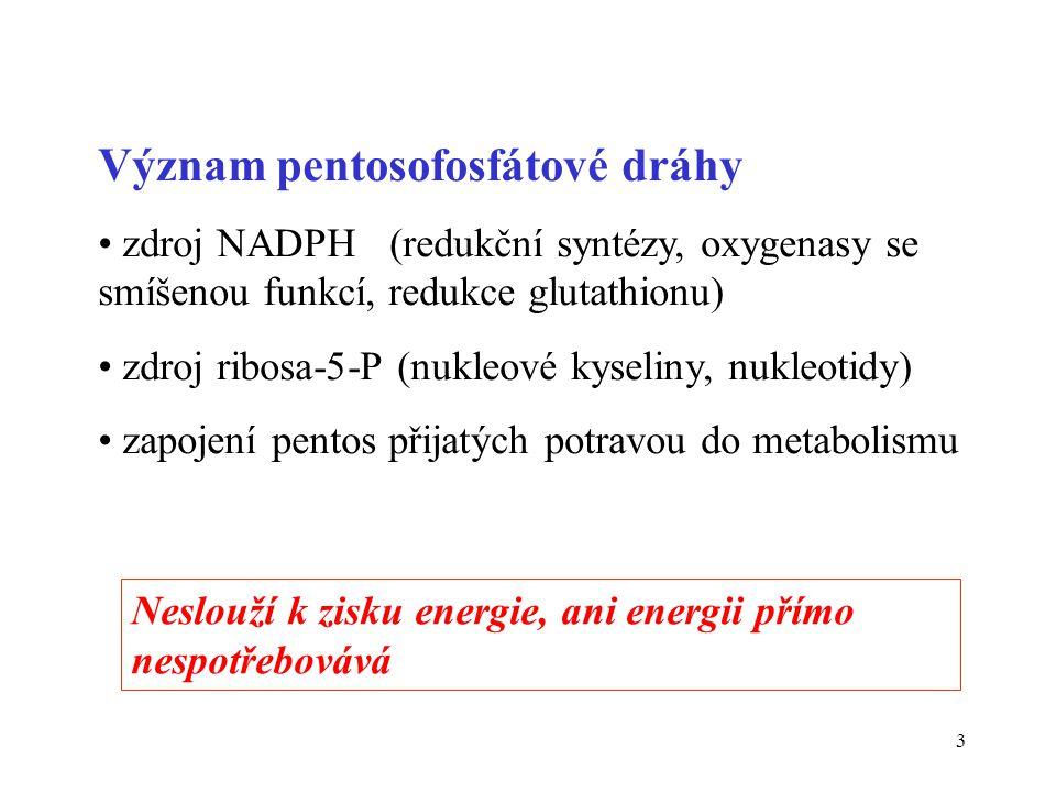 14 Souhrnná bilance pentosafosfátové dráhy Ribulosa-5-P Ribosa -5-P 2 Ribulosa-5-P 2 Xylulosa -5-P Xylu-5-P + Rib-5-P Glyc-3-P + Sed-7-P Sed-7-P + Glyc-3-P Ery-4-P + Fru-6-P Xylu-5-P + Ery-4-P Glyc-3-P + Fru-6-P 3 Ribulosa-5-P Glyceraldehyd-3-P + 2 Fru-6-P 3 x 5C 3C + 2 x 6C