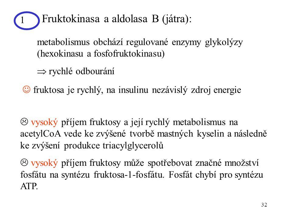 32 1 Fruktokinasa a aldolasa B (játra): metabolismus obchází regulované enzymy glykolýzy (hexokinasu a fosfofruktokinasu)  rychlé odbourání  fruktos