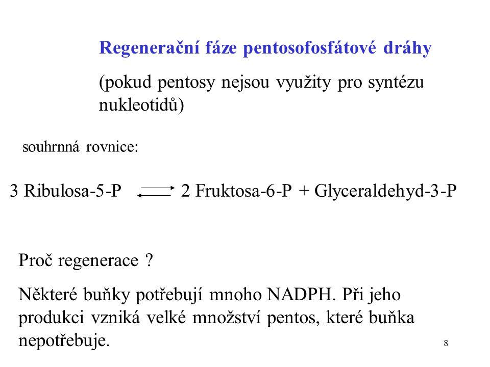 19 Potřeby buňky určují směr reakcí pentosofosfátové dráhy Potřeba buňkySměr dráhy pouze NADPHOxidativní větev produkuje NADPH, regenerační fáze konvertuje pentosy na Glc-6-P NADPH + ribosa-5-POxidativní větev produkuje NADPH a ribuloso-5-P, isomerasa ji přeměňuje na ribosu pouze ribosa-5-PProbíhá konverze fruktosa-6-P a glyceraldehydu-5-P na ribosa-5-P NADPH a pyruvátOxidativní větev produkuje NADPH, regenerační fáze přeměňuje ribulosa-5-P na fruktosa-6-P a glyceraldehyd- 3-P, glykolýza produkuje pyruvát