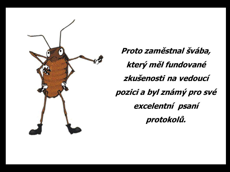 Proto zaměstnal švába, který měl fundované zkušenosti na vedoucí pozici a byl známý pro své excelentní psaní protokolů.