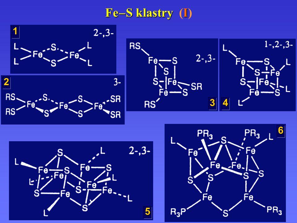 Fe – S klastry I Fe – S klastry (I) 1 2 3 4 5 6