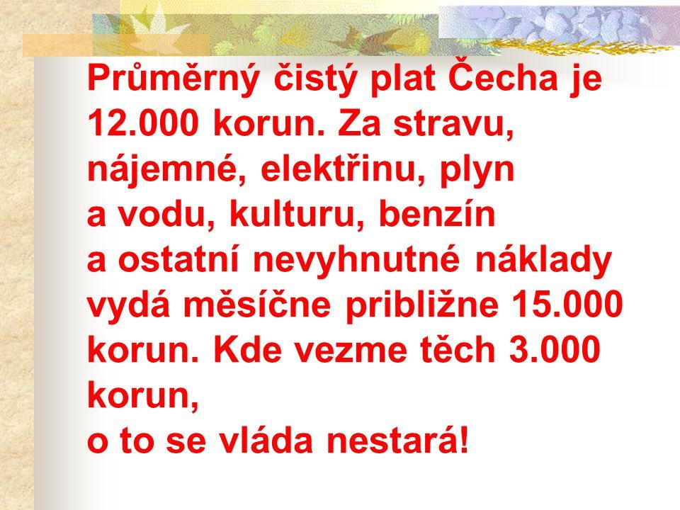 Průměrný čistý plat Čecha je 12.000 korun. Za stravu, nájemné, elektřinu, plyn a vodu, kulturu, benzín a ostatní nevyhnutné náklady vydá měsíčne pribl