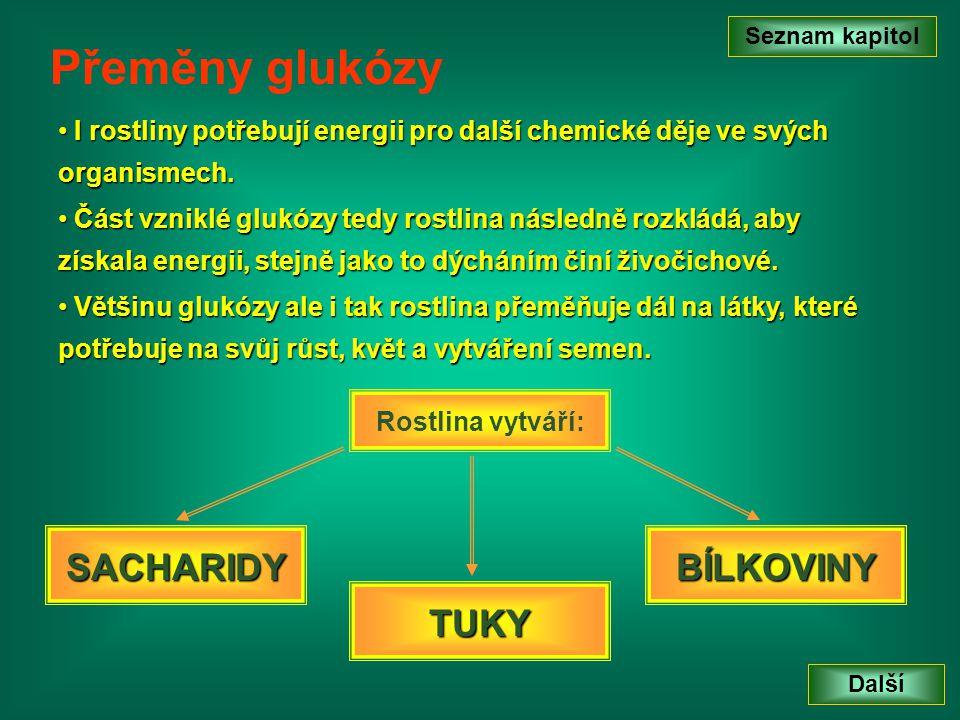 Seznam kapitol Další Přeměny glukózy • I• I• I• I rostliny potřebují energii pro další chemické děje ve svých organismech. • V• V• V• Většinu glukózy
