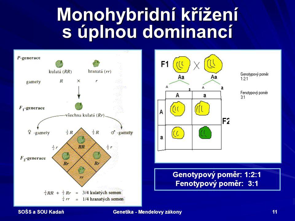 SOŠS a SOU Kadaň Genetika - Mendelovy zákony 10 Zákon o čistotě vloh a jejich štěpení Při vzájemném křížení heterozygotů (F2 generace) vzniká potomstv