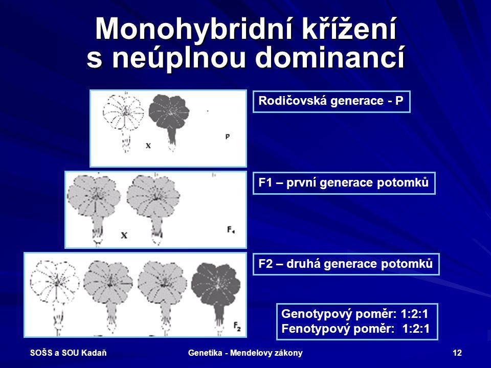 SOŠS a SOU Kadaň Genetika - Mendelovy zákony 11 Monohybridní křížení s úplnou dominancí Genotypový poměr: 1:2:1 Fenotypový poměr: 3:1