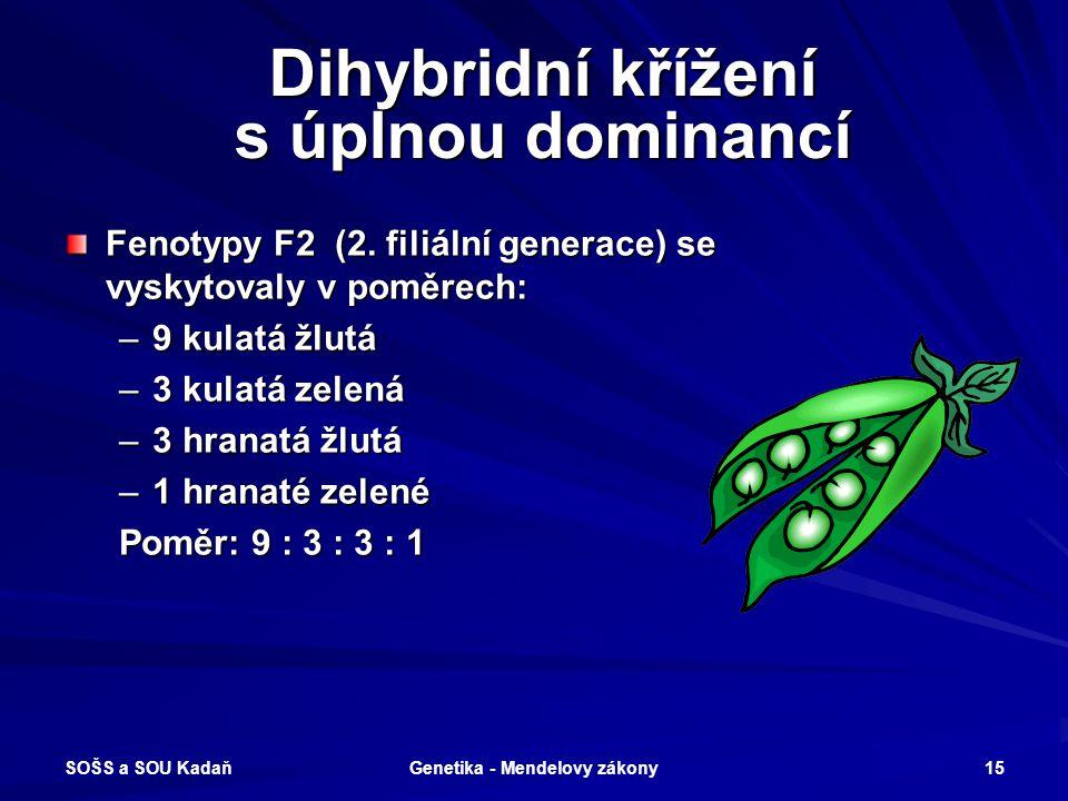 SOŠS a SOU Kadaň Genetika - Mendelovy zákony 14 Dihybridní křížení s úplnou Dihybridní křížení s úplnou dominancí