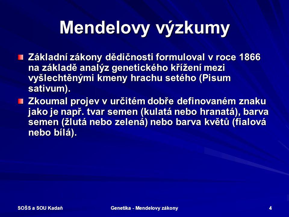 SOŠS a SOU Kadaň Genetika - Mendelovy zákony 3 Význam J. G. Mendela Mendel považoval proměnlivost rostlin za doloženou skutečnost. Byl první, kdo neho