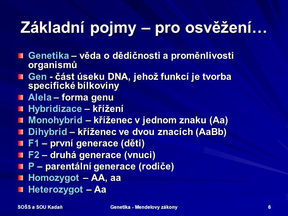 SOŠS a SOU Kadaň Genetika - Mendelovy zákony 5 Hrach setý - (Pisum sativum) Tyčinky - samčí pohlavní orgány Pestík - samičí pohlavní orgán Hrach setý