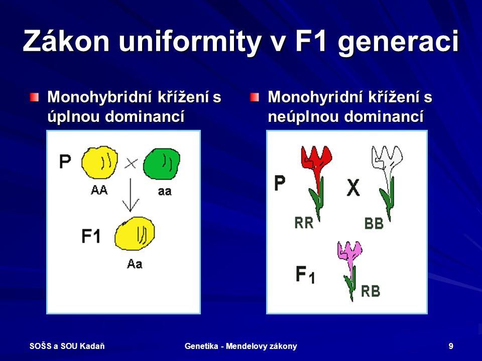 SOŠS a SOU Kadaň Genetika - Mendelovy zákony 8 Zákon uniformity Při vzájemném křížení homozygotů (F1 generace) vzniká potomstvo, které je svým genotyp