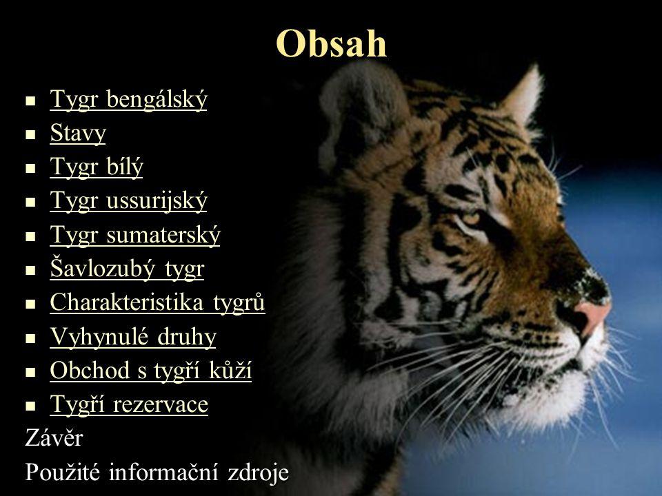 Tygr bengálský •Výskyt: Indie,Bangladéš,Nepál,Bhútán •Tygr džunglový •Délka: 3-4 m •Váha: 100-300 kg •Často váží i více