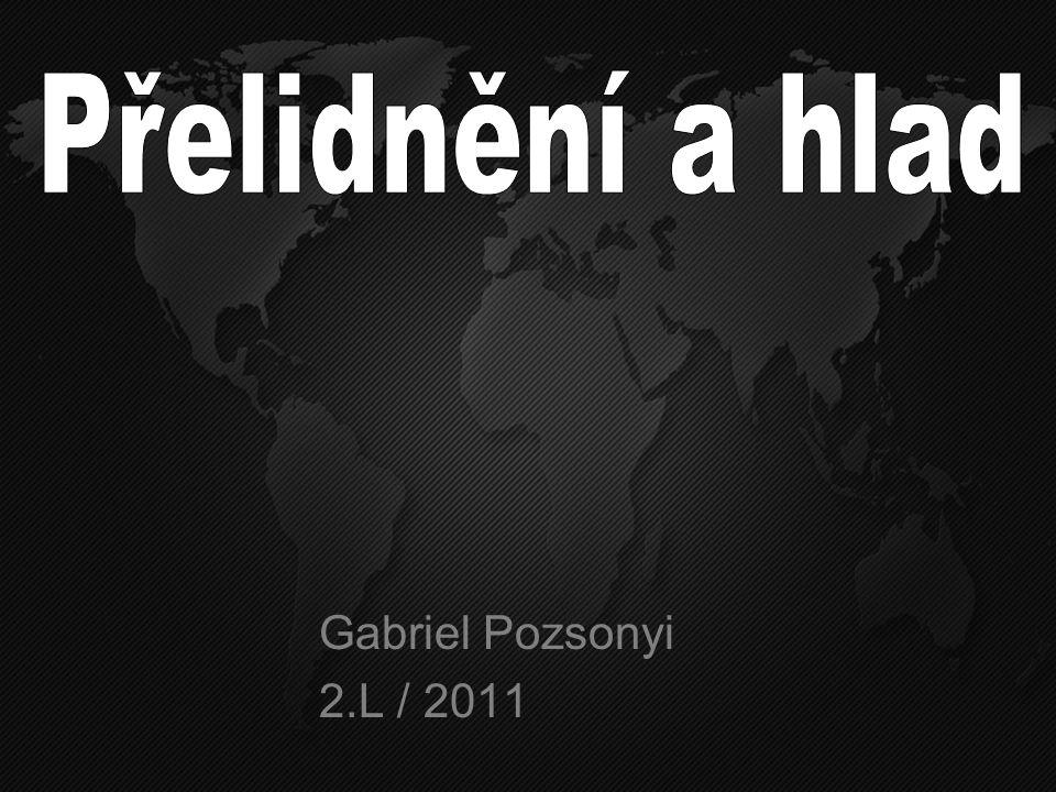 Gabriel Pozsonyi 2.L / 2011