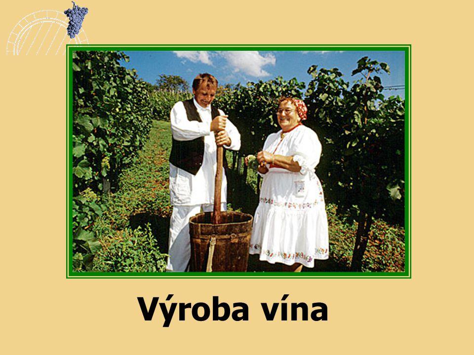 Výroba vína