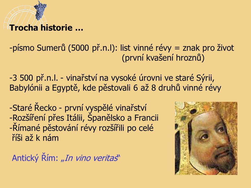 Trocha historie … - -písmo Sumerů (5000 př.n.l): list vinné révy = znak pro život (první kvašení hroznů) -3 500 př.n.l. - vinařství na vysoké úrovni v