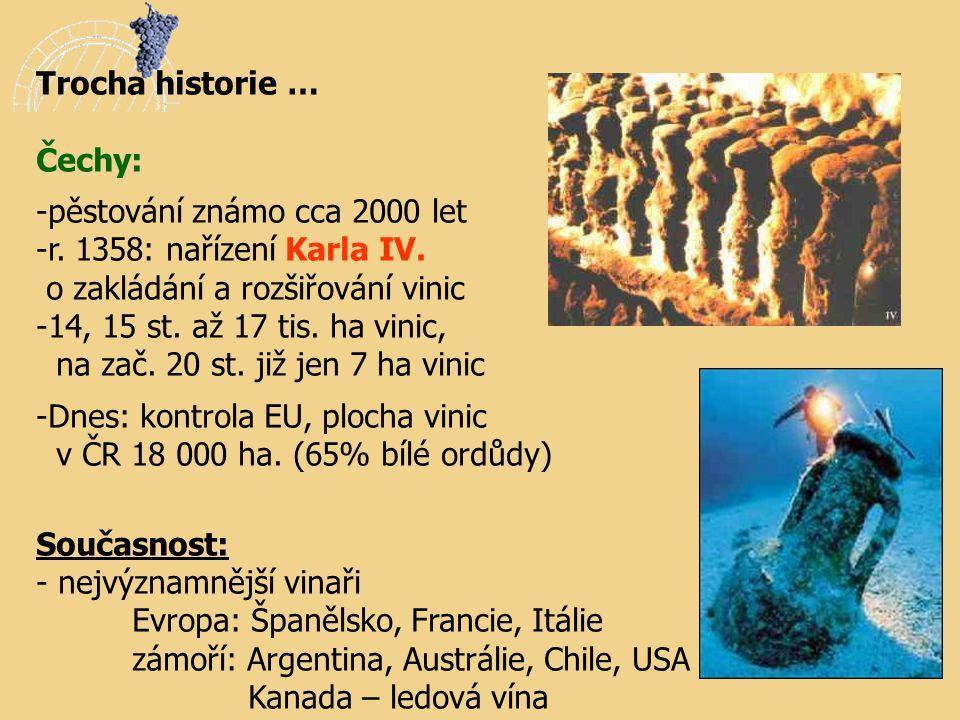 Trocha historie … Čechy: -pěstování známo cca 2000 let -r. 1358: nařízení Karla IV. o zakládání a rozšiřování vinic -14, 15 st. až 17 tis. ha vinic, n