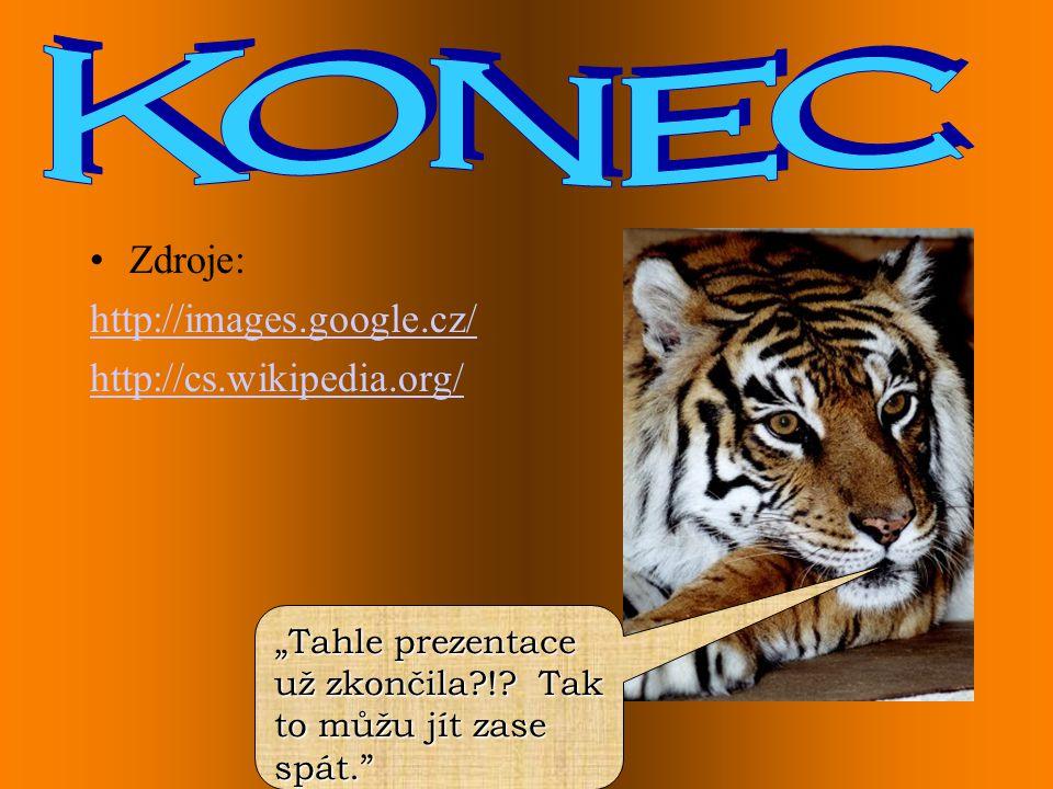 """•Zdroje: http://images.google.cz/ http://cs.wikipedia.org/ """"Tahle prezentace už zkončila?!? Tak to můžu jít zase spát."""""""