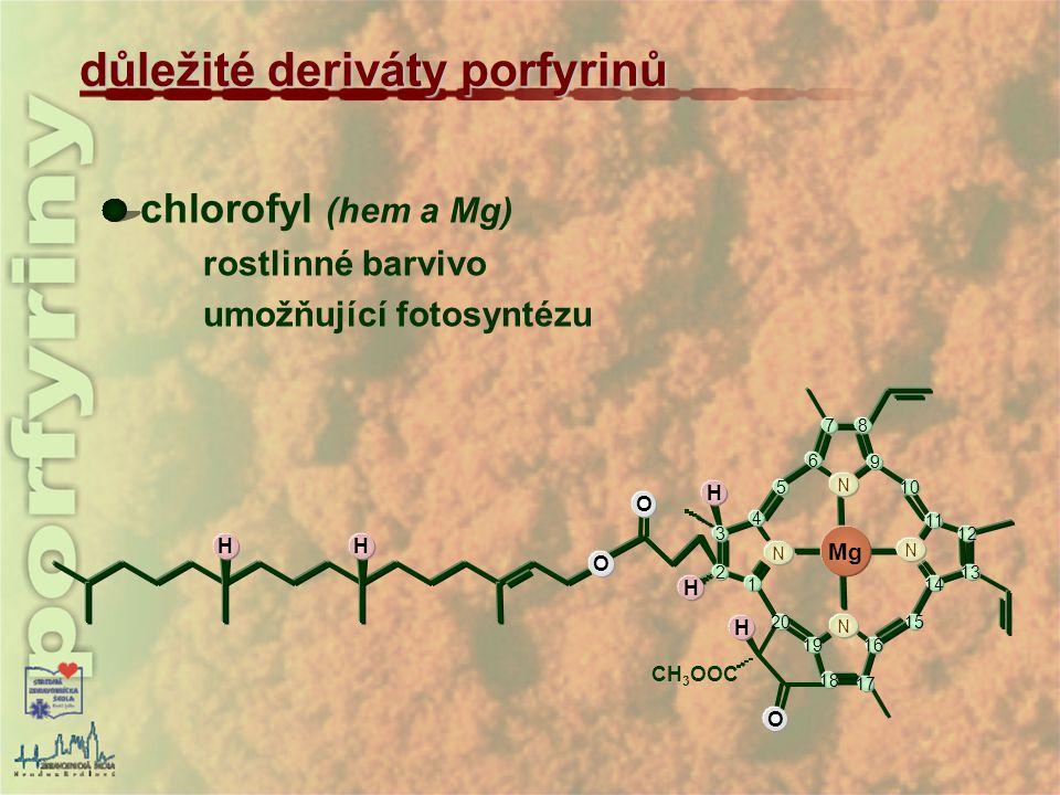 chlorofyl (hem a Mg) rostlinné barvivo umožňující fotosyntézu důležité deriváty porfyrinů HH O O H H O H CH 3 OOC Mg 1 2 3 4 5 6 78 9 10 11 12 13 14 1