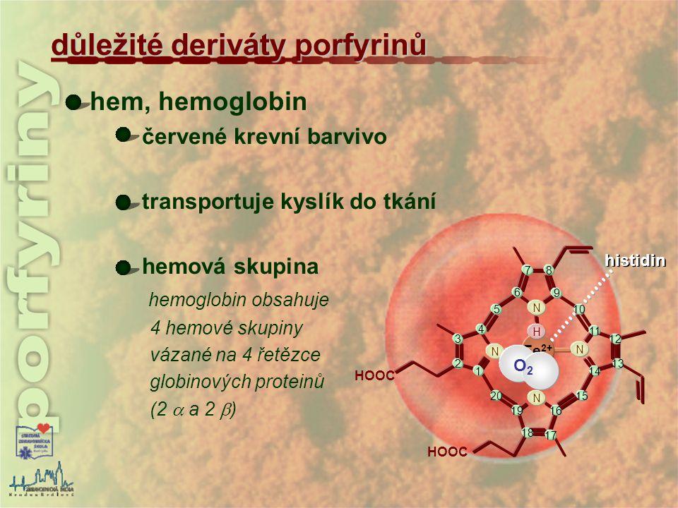hem, hemoglobin červené krevní barvivo transportuje kyslík do tkání hemová skupina hemoglobin obsahuje 4 hemové skupiny vázané na 4 řetězce globinovýc