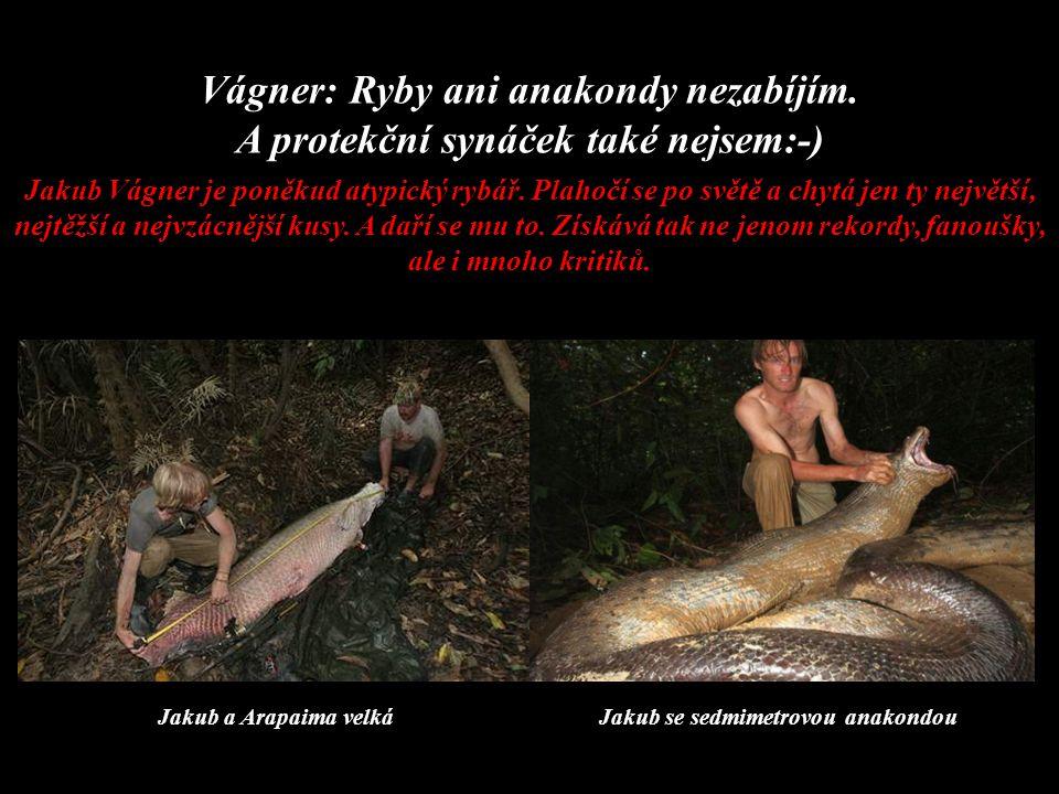 Vágner: Ryby ani anakondy nezabíjím.