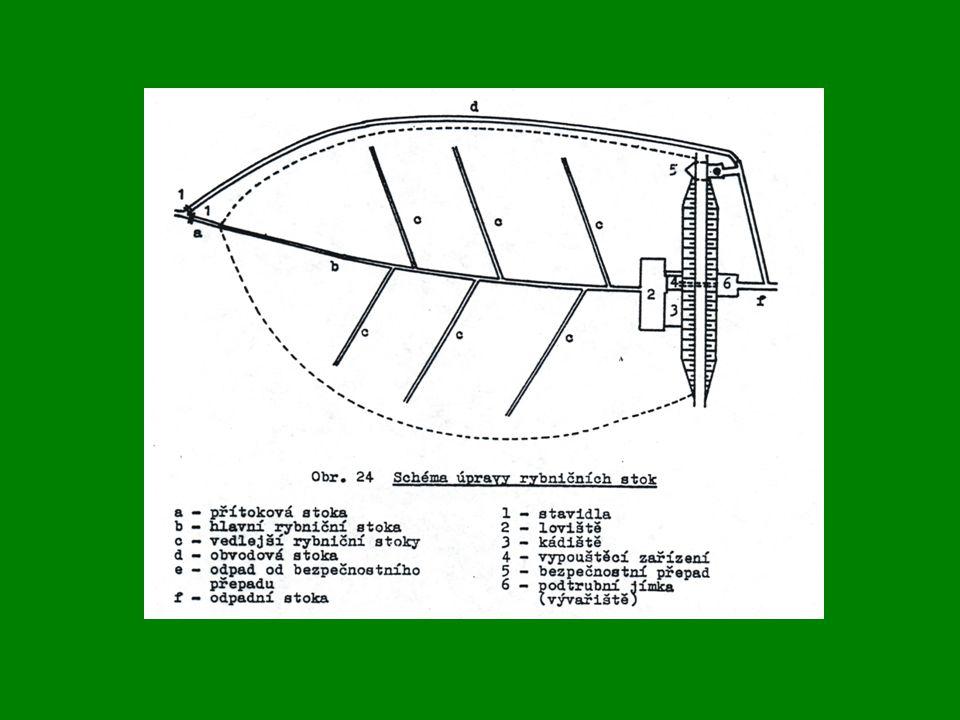 Technická stavba rybníků: •Nadržení vody: - legislativa – vodoprávní rozhodnutí - maximální hladina – označení - manipulační řád •Příkopové rybníčky •Dubraviovy výtěrové rybníčky •Speciální komory