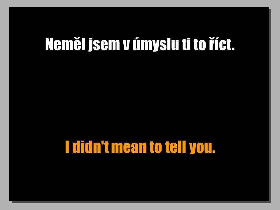 Neměl jsem v úmyslu ti to říct. I didn't mean to tell you.