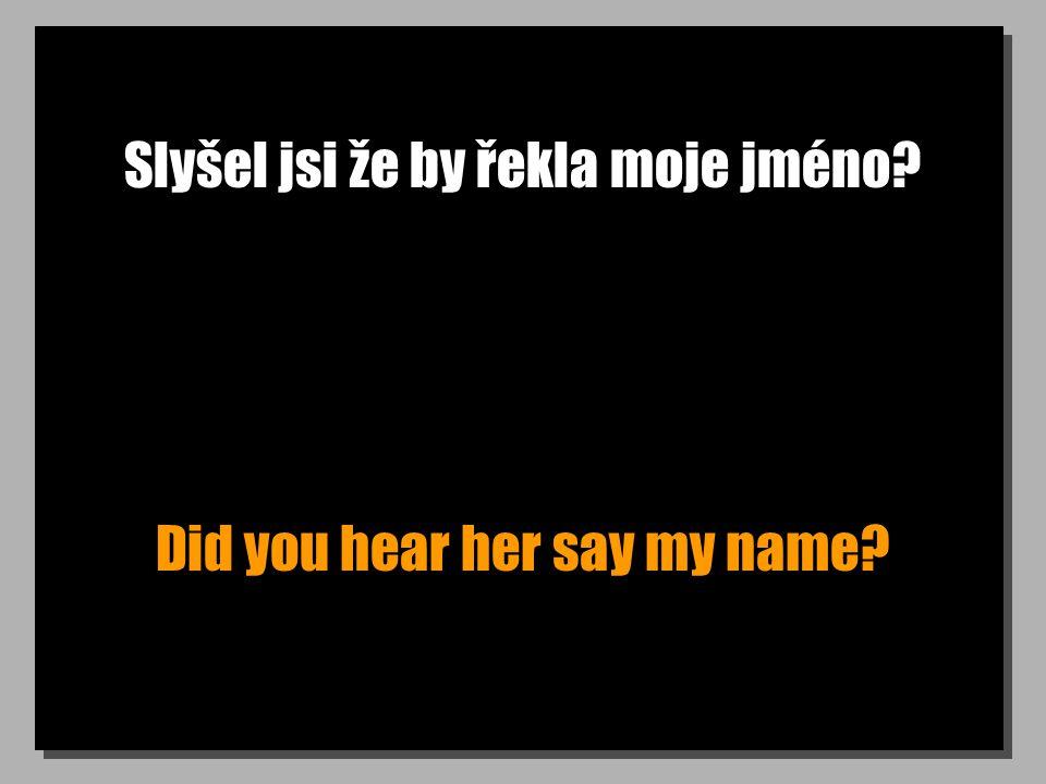 Slyšel jsi že by řekla moje jméno? Did you hear her say my name?