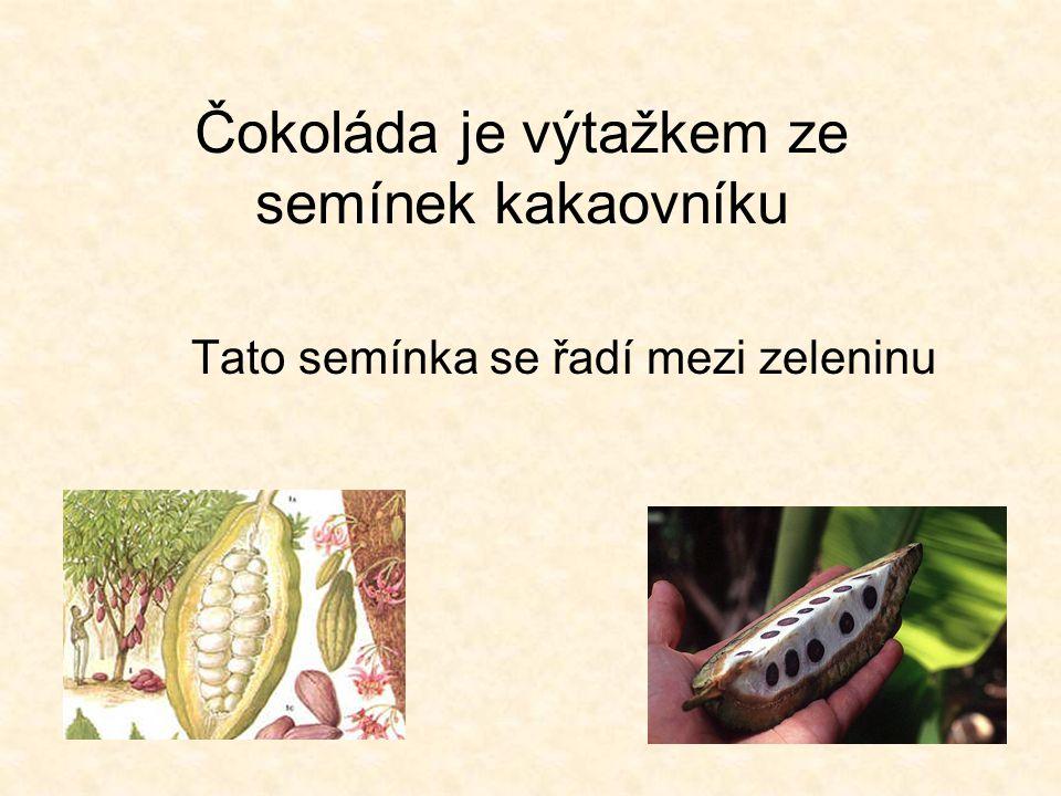 Čokoláda je výtažkem ze semínek kakaovníku Tato semínka se řadí mezi zeleninu