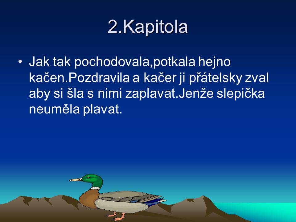 2.Kapitola •Jak tak pochodovala,potkala hejno kačen.Pozdravila a kačer ji přátelsky zval aby si šla s nimi zaplavat.Jenže slepička neuměla plavat.