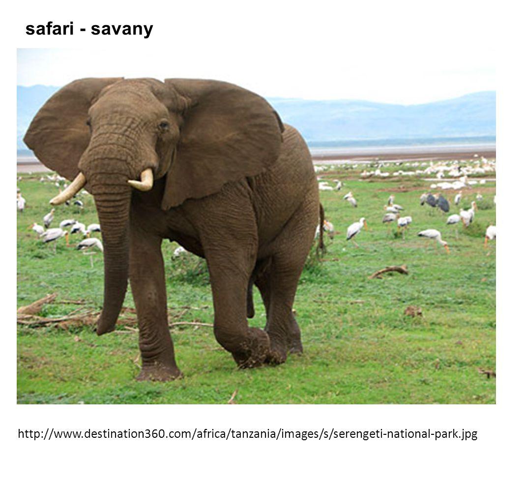 http://www.destination360.com/africa/tanzania/images/s/serengeti-national-park.jpg safari - savany