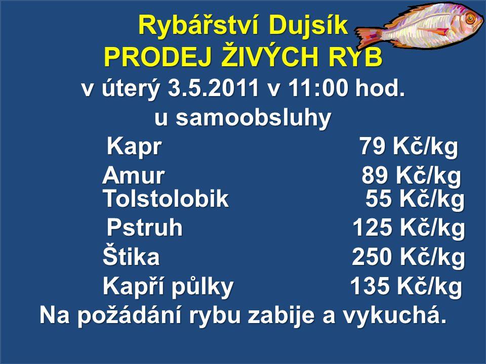 Rybářství Dujsík PRODEJ ŽIVÝCH RYB v úterý 3.5.2011 v 11:00 hod. u samoobsluhy Kapr 79 Kč/kg Kapr 79 Kč/kg Amur 89 Kč/kg Tolstolobik 55 Kč/kg Pstruh 1