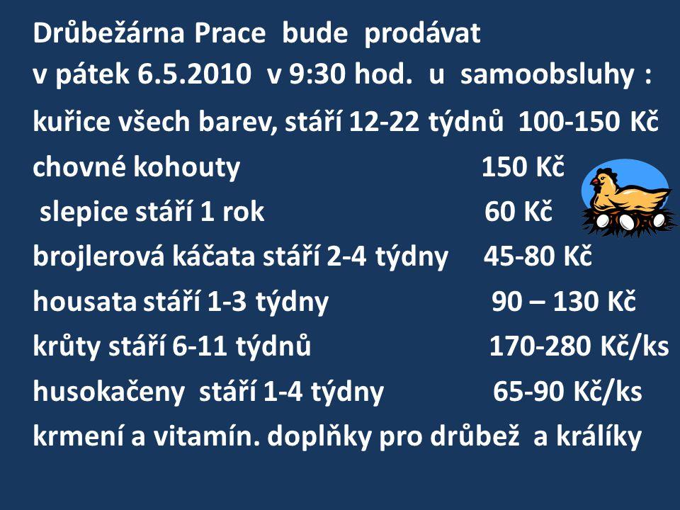 Drůbežárna Prace bude prodávat v pátek 6.5.2010 v 9:30 hod. u samoobsluhy : kuřice všech barev, stáří 12-22 týdnů 100-150 Kč chovné kohouty 150 Kč sle