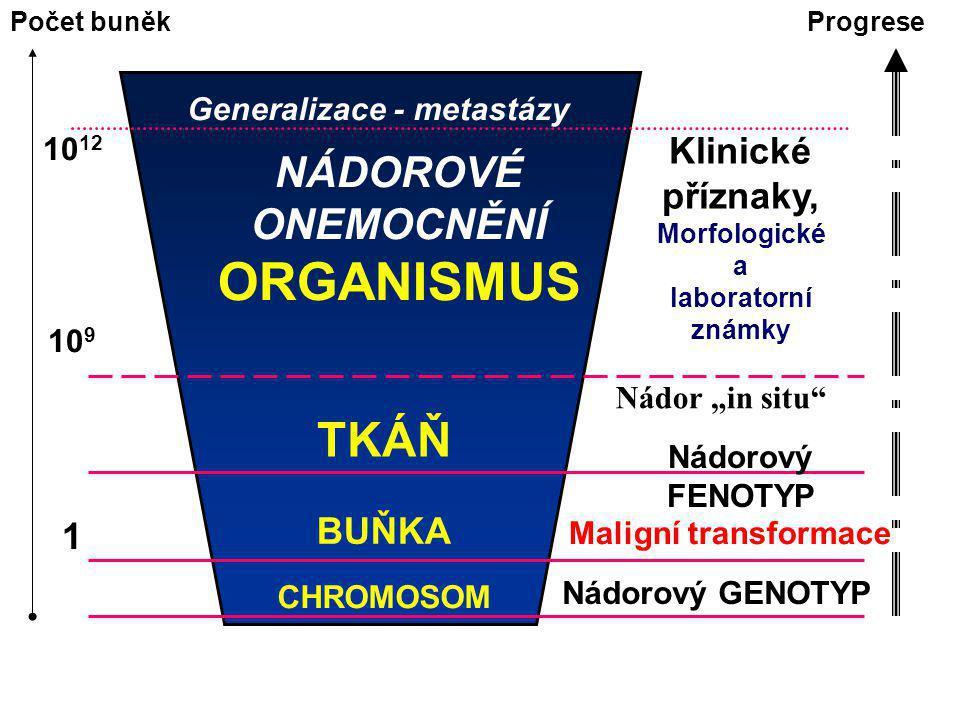 Souprava pro detekci tumoru: BAT-26 v stolici (PreGen 26) pozitivní u > 90% HPNC Rozlišení nádorové DNA