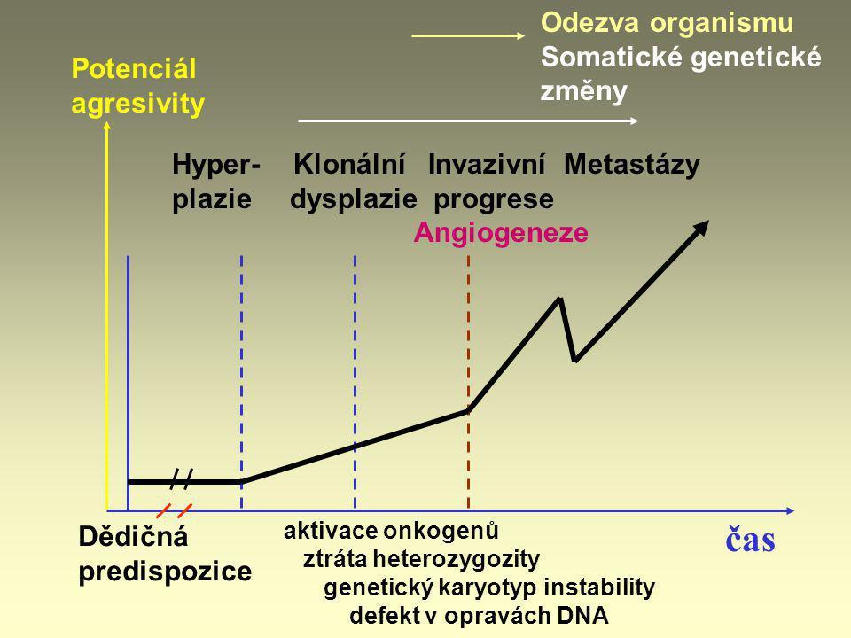 REZISTENCE vůči CHEMOTERAPII Genová amplifikace dihydrofolátreduktasy (DHFR): Je navozena jejím inhibitorem – methotrexátem (přežívající nádorové buňky amplifikují gen DHFR až 1000násobné kopie – nikoliv buňky normální) Amplifikace genu multidrug-transport protein neboli P170 Je to transmembránový fosfoprotein (ATP-pumpa): vytlačuje hydrofobní toxické látky z buňky ven (Je normálně v hepatocytech, enterocytech, renálních tubulech – součást ABC-transporterů ATP-binding casette transporter)