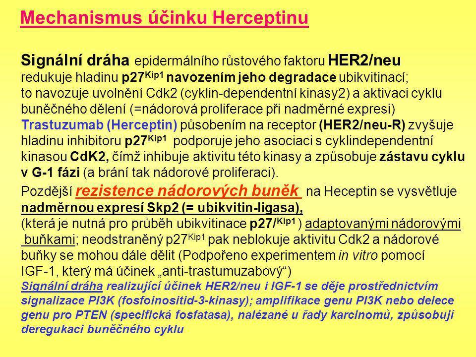 HERCEPTIN (trastuzumab) Humanizovaná monoklonlní protilátka proti proteinu 2 receptoru epidermálního růstového faktoru - Her-2/neu (c-erbB2) nadměrně exprimovaného (nádorová amplifikace genu) u některých epitelových nádorů (25 % karcinom prsu ) Možné úspěšné léčení metastazujících karcinomů prsu (neopovídajících na antiestrogenovou terapii) Nutno dříve prokázat přítomnost HER-2 při biopsii nádoru a pak aplikovat Heceptin