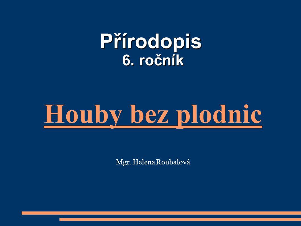 Přírodopis 6. ročník Houby bez plodnic Mgr. Helena Roubalová