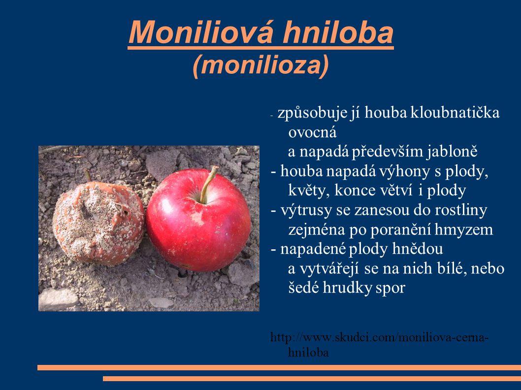 Moniliová hniloba (monilioza) - způsobuje jí houba kloubnatička ovocná a napadá především jabloně - houba napadá výhony s plody, květy, konce větví i plody - výtrusy se zanesou do rostliny zejména po poranění hmyzem - napadené plody hnědou a vytvářejí se na nich bílé, nebo šedé hrudky spor http://www.skudci.com/moniliova-cerna- hniloba