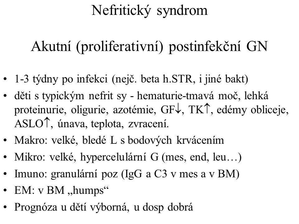 Nefritický syndrom Akutní (proliferativní) postinfekční GN •1-3 týdny po infekci (nejč. beta h.STR, i jiné bakt) •děti s typickým nefrit sy - hematuri