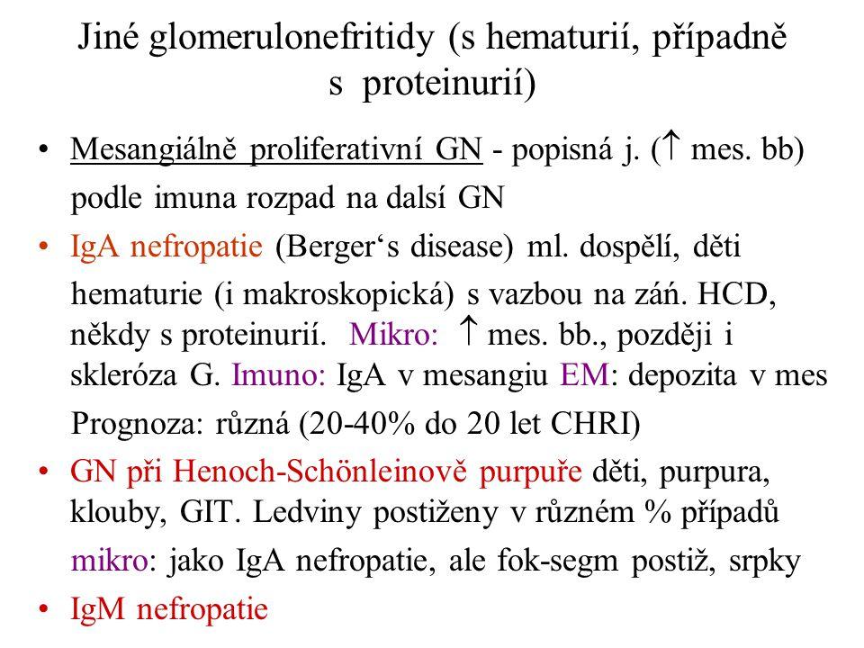Jiné glomerulonefritidy (s hematurií, případně s proteinurií) •Mesangiálně proliferativní GN - popisná j. (  mes. bb) podle imuna rozpad na dalsí GN