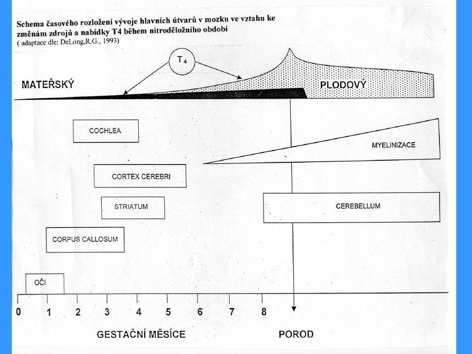 JAIT- získaná hypotyreoza, delší dobu probíhající KLINIKA : facies hypothyreoidea ( odulost) periorbitální edém fysická a mentální letargie nápadné zhoršení školního prospěchu snížení růstové rychlosti snížení /zvýšení těl.