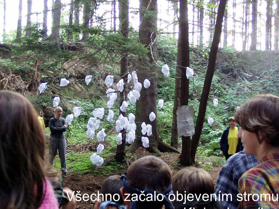 Všechno začalo objevením stromu Kloboukovníku.