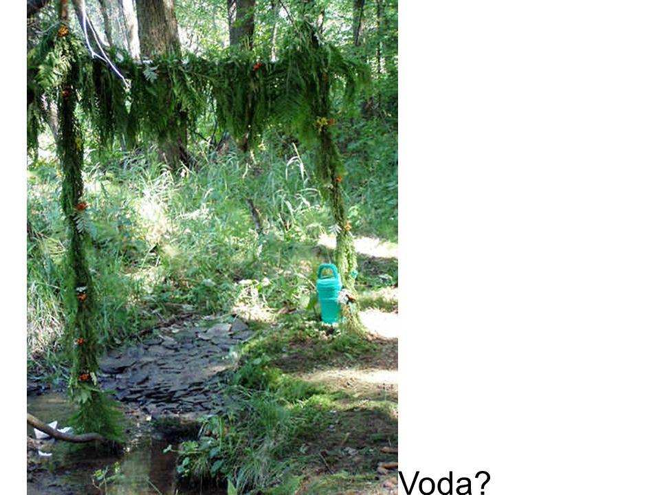 Voda?