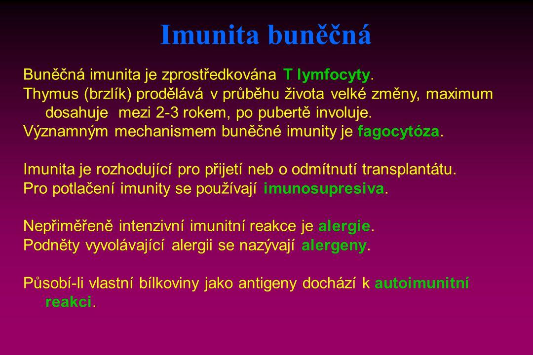 Buněčná imunita je zprostředkována T lymfocyty. Thymus (brzlík) prodělává v průběhu života velké změny, maximum dosahuje mezi 2-3 rokem, po pubertě in