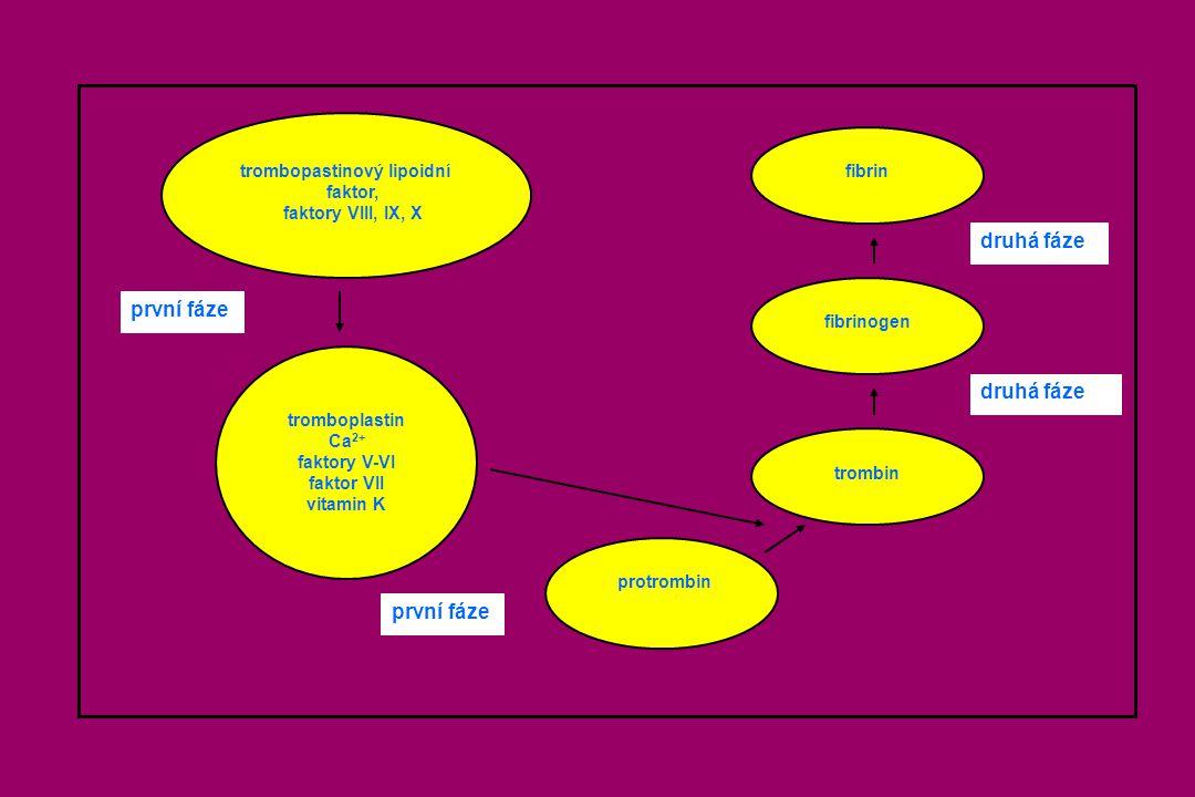 trombopastinový lipoidní faktor, faktory VIII, IX, X tromboplastin Ca 2+ faktory V-VI faktor VII vitamin K první fáze protrombin trombin fibrinogen fi