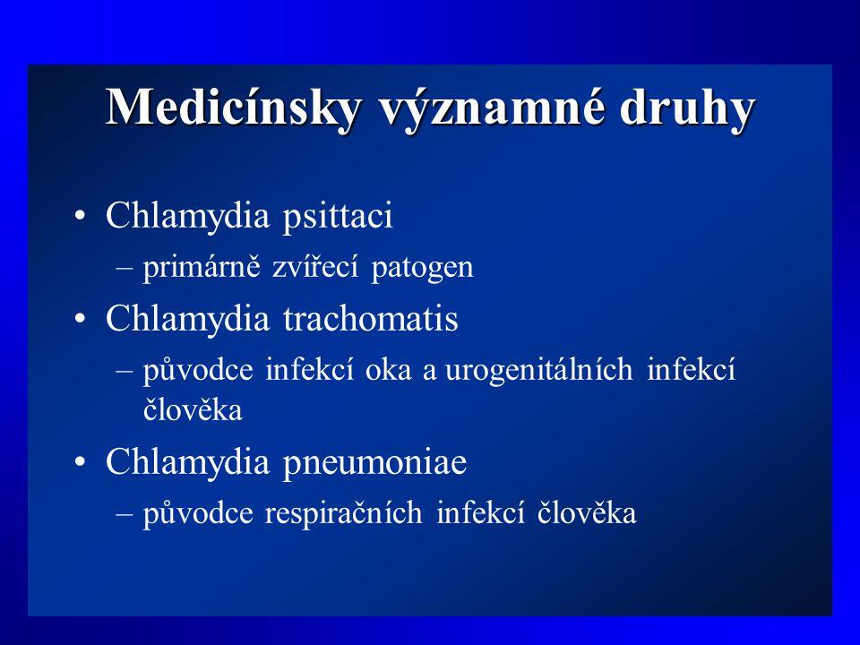 Medicínsky významné druhy •Chlamydia psittaci –primárně zvířecí patogen •Chlamydia trachomatis –původce infekcí oka a urogenitálních infekcí člověka •