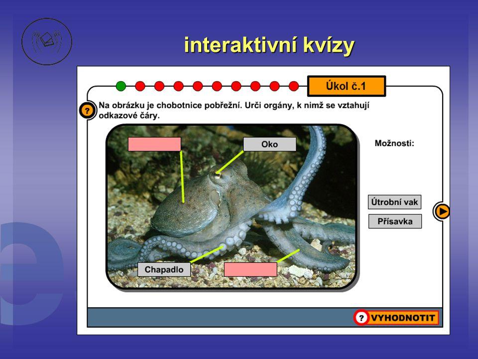 interaktivní kvízy